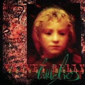Little Lies Songs