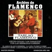 Archivo De Flamenco, Vol.1: Tablao Flamenco Songs