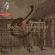 Bach & Telemann Songs