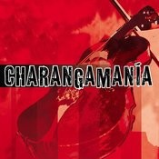 Charangamania Vol. 1 Songs