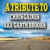 A Tribute To Chris Gaines Aka Garth Brooks Songs