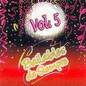 Éxitos Bailables De Siempre Volume 5 Songs