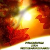 Pranayam Ath Nombaramaanu Songs