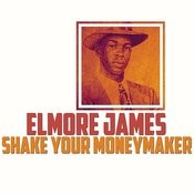 Shake Your Moneymaker Song