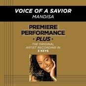 Voice Of A Savior (Performance Tracks) - EP Songs