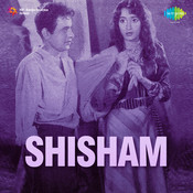 Shisham Songs