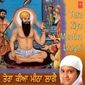 Tera Keeya Mitha Laage Songs