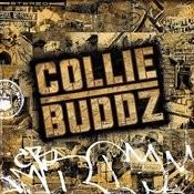 Collie Buddz Songs