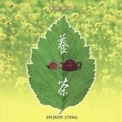Strtng Flting & tea-drinling Heart Song