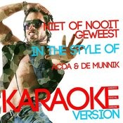 Niet Of Nooit Geweest (In The Style Of Acda & De Munnik) [Karaoke Version] - Single Songs