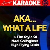 Aka…what A Life (In The Style Of Noel Gallagher's High Flying Birds) Songs