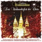Mein Weihnachten - Das Chöre Weihnachtsfest Songs