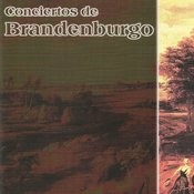 Brandenburg Concerto No. 3 In G Major, Bwv 1048: III. Allegro Song