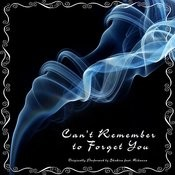 Can't Remember To Forget You (Originally Performed By Shakira Feat. Rihanna) - Single Songs