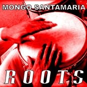 Roots Songs