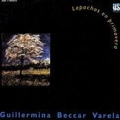 Lapachos En Primavera Songs