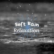 Soft Rain Relaxation Songs