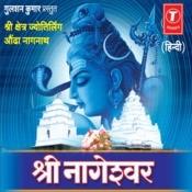 Shri Nageshwar (Dhun,jaap,aarti) Songs