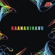 Kaanakinavu / Memorable Hits Of Yesudas Songs