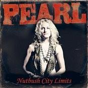 Nutbush City Limits Song