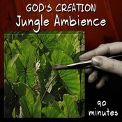 Jungle Ambience (90 Minutes) Songs