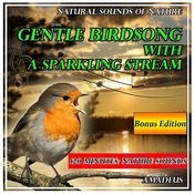 Gentle Birdsong With A Sparkling Stream: Natural Sounds Of Nature: Bonus Edition Songs
