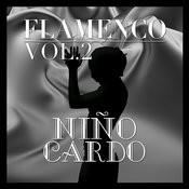 Flamenco: Niño Ricardo Vol.2 Songs