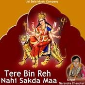 Main Tere Bin Rah Nahi Sakda Song
