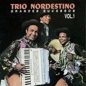 Grandes Sucessos Vol. 1 Songs