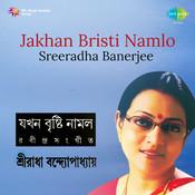 Sreeradha - Jakhan Bristi Namlo Songs