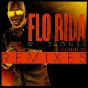 Wild Ones (feat. Sia) [Remixes] Songs