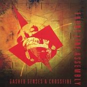 Gashed Senses & Crossfire Songs