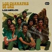 Los Charapas De Oro Songs