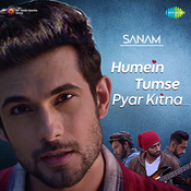 Sanam - Humein Tumse Pyar Kitna Sanam Full Mp3 Song
