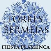 Fiesta Flamenca En Torres Bermejas Songs