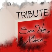 See No More (Joe Jonas Tribute) - Single Songs