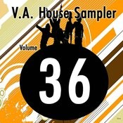 V.A. House Sampler 036 Songs