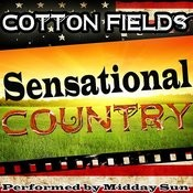 Cotton Fields: Sensational Country Songs