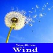 Natures Rhythms: Wind Songs