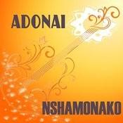 Nshamonako Songs