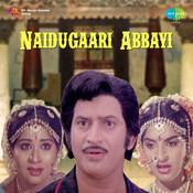 Naidugaari Abbayi Songs