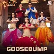 Goosebump MP3 Song Download- Kung Fu Yoga Goosebump Song by