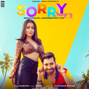 Sorry Song MixSingh Full Mp3 Song