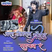 Asa Bhimrao Branded Rahaycha Ra Song