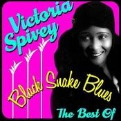 Black Snake Blues - The Best Of Songs