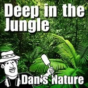 Deep In The Jungle (Nature Sounds) Songs