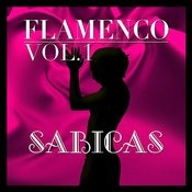 Flamenco: Sabicas Vol.1 Songs