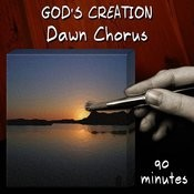Dawn Chorus (90 Minutes) Songs