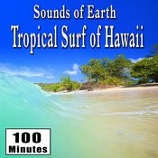 Sounds Of Earth: Tropical Surf Of Hawaii Songs