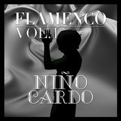 Flamenco: Niño Ricardo Vol.1 Songs